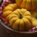 野菜嫌いの子供でも喜んでパクパク食べてくれる簡単かぼちゃ料理はこれ