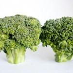 美味しいブロッコリーのゆで方と保存法!便秘解消に効く栄養素とは?