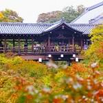 地元民が選ぶ京都の紅葉ランキング極上3大スポットにおいでやす。