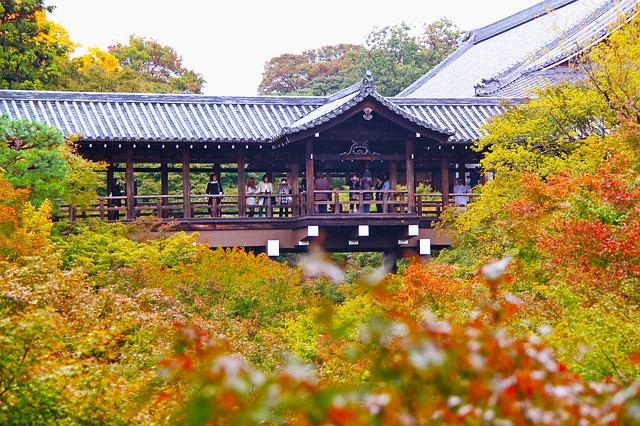 京都の紅葉の画像