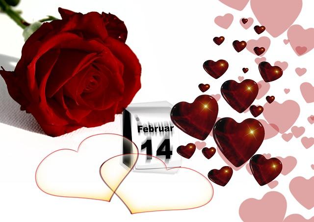 バレンタインローズの画像