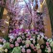 東京ミッドタウンの画像