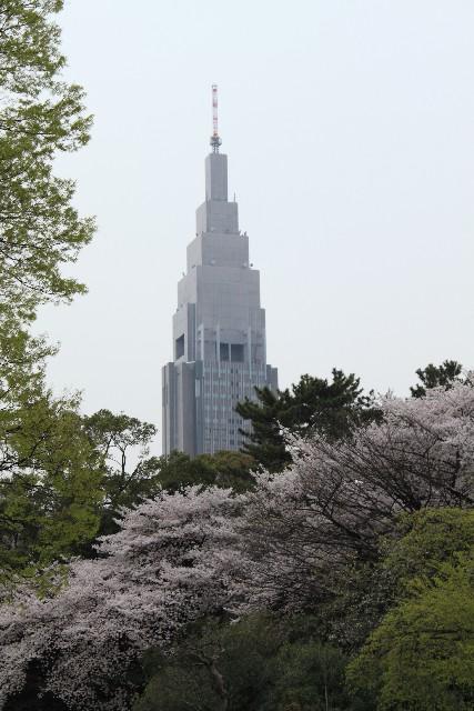 新宿の画像