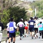 2016堺シティマラソンのエントリー方法!種目や魅力を徹底解説