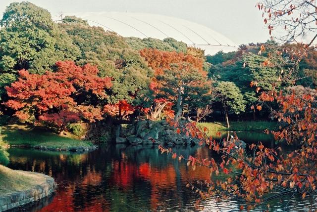 小石川後楽園の画像