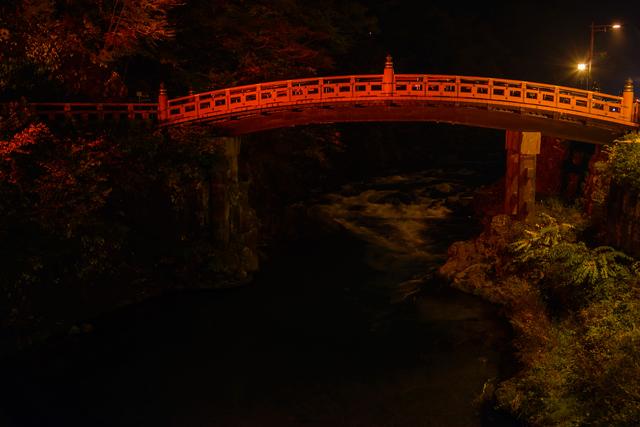 紅葉ライトアップの画像