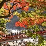 香嵐渓の紅葉の見頃とライトアップ!恋愛成就のパワースポットを巡る絶景プラン