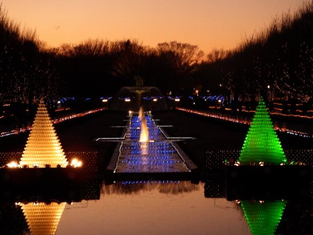 昭和記念公園の画像
