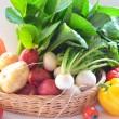 春野菜の画像