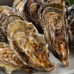 牡蠣の栄養が男性女性別に与える効能とは?生き生きとした身体を作る秘訣や調理法